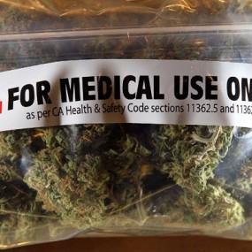 Graines médicinales