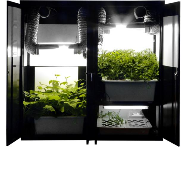 comment-faire-une-bouture-de-cannabis-box-multifonction-led-trinity