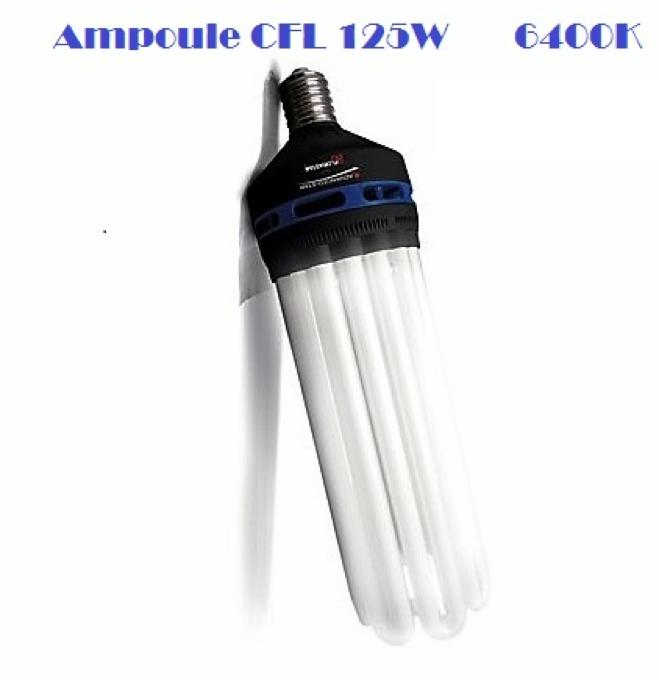 culture-de-cannabis-en-interieur-ampoule-cfl-125W-pour-la-periode-de-croissance