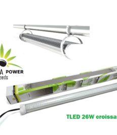 cultiver cannabis Neon TLED